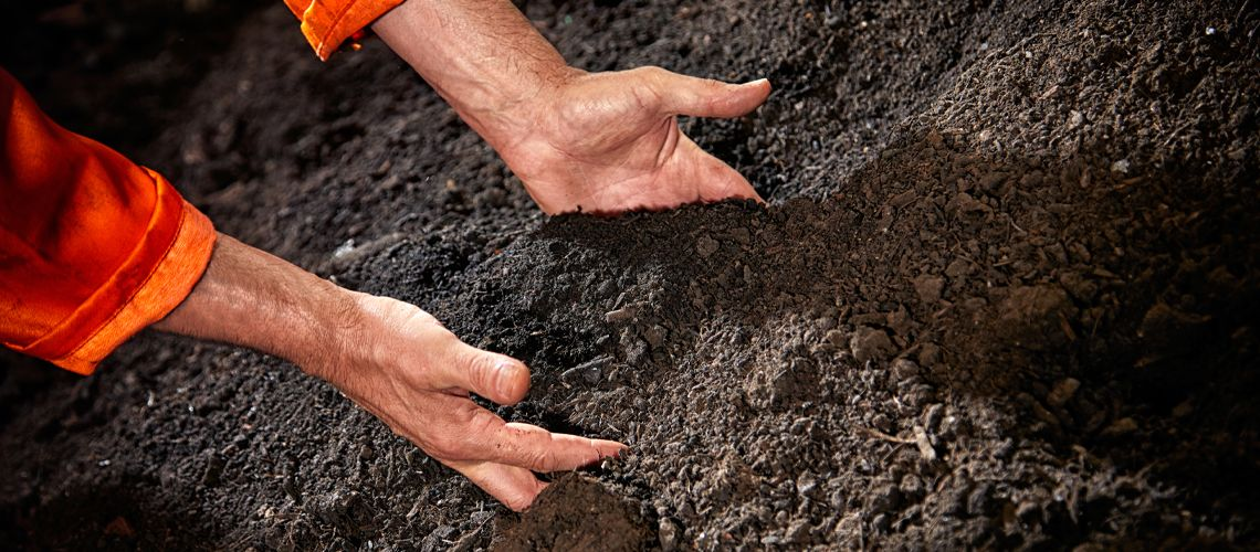 Buy compost products